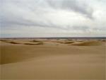オルドス 砂漠